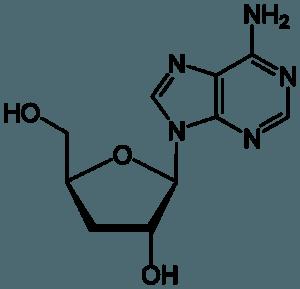 Cordycepin's awfully pretty molecular structure.