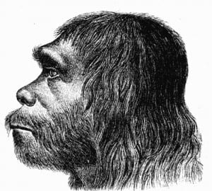 First reconstruction of Neanderthal man by Hermann Schaaffhausen (1888)