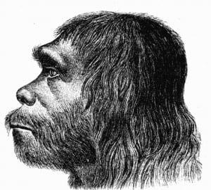 First reconstruction of Neanderthal man by Hermann Schaaffhausen (1888)
