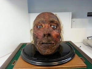 Front view of Jeremy Bentham's head.