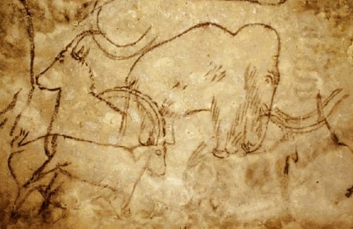 By Cave painter (Own work) [Public domain], via Wikimedia Commons