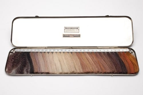 Dr. Eugen Fischer's Haarfarbentafel, or hair colour scale.