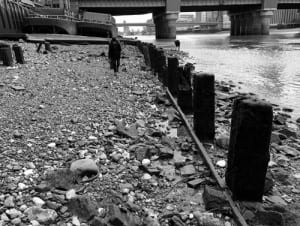 Searching for creatures along the foreshore of the River Thames (c) Eleanor Morgan