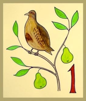 Image of a partridge in a pear tree from a Twelve Days of Christmas drawing