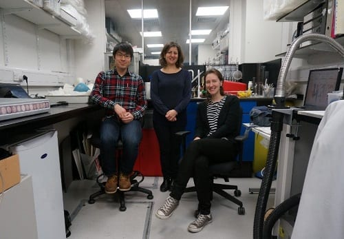 The UCL PACE Conservation team, from left to right Young Woo, Susi Pancaldo and Emilia Kingham.