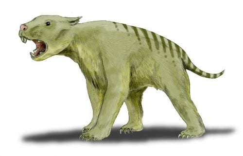Reconstruction of the marsupial lion, by Nobu Tamura (http://spinops.blogspot.com), CC-BY-3.0; via Wikimedia Commons
