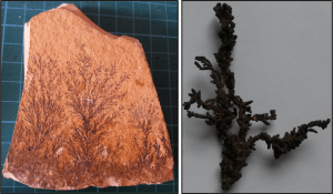Minerals with dendritic habit