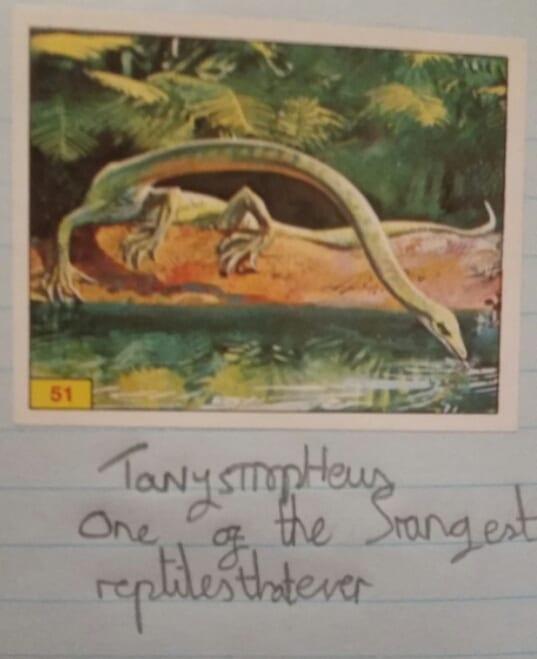 (C) Dinosaur Spotting Handbook by Mark Carnall aged 10.