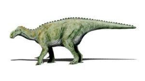 Iguanodon by Nobu Tamura via Wikimedia Commons; CC BY-SA 3.0