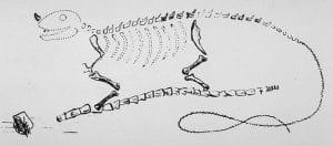 Gideon Mantell's Iguanodon reconstruction, 1834