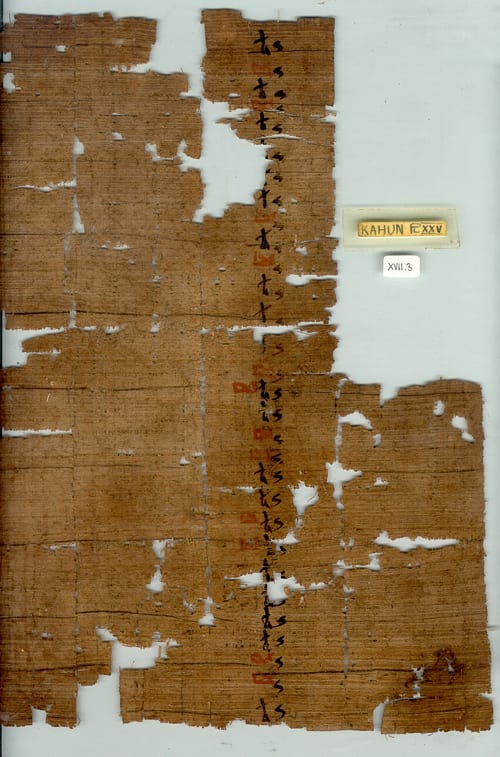 Hieratic Papyrus UC32192