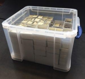 Fossil Box 12