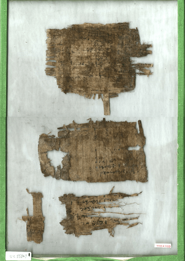 UC55847 papyrus before conservation