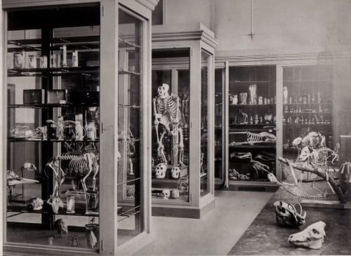 Grant Museum in the 1880's