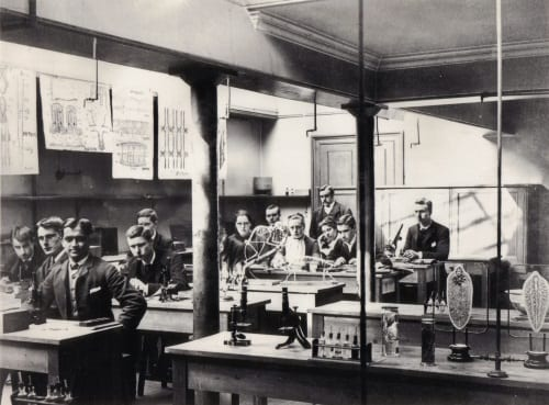 Lankester's Long Course in Zoology 1887