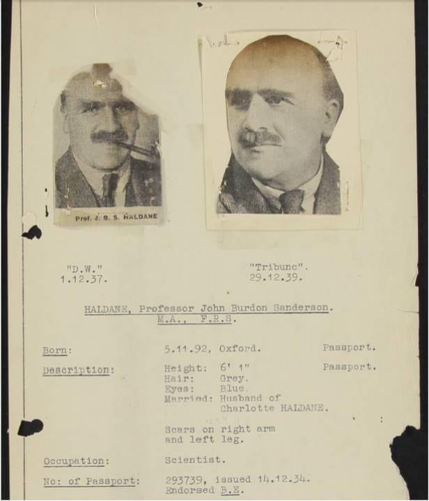 Haldane MI5 file