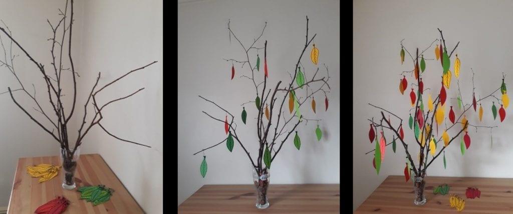 IROKO evaluation tree