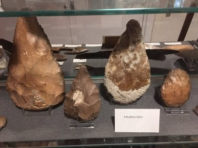 Paleolithic Artefacts in the Petrie Museum