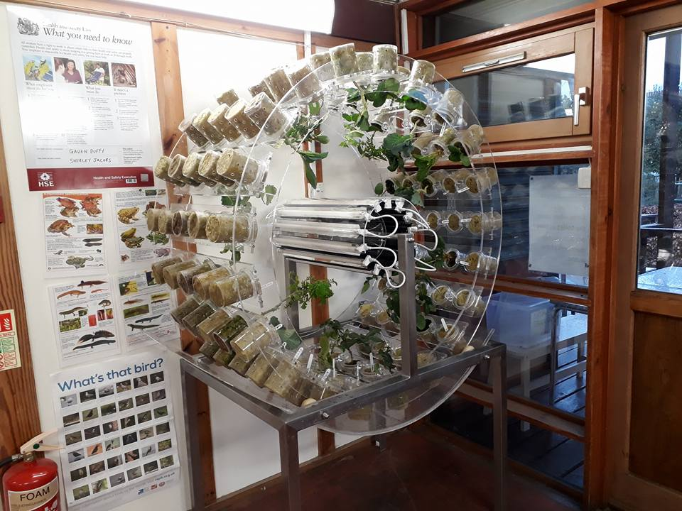 circular plastic machine using hydroponics to grow plants and vegetables