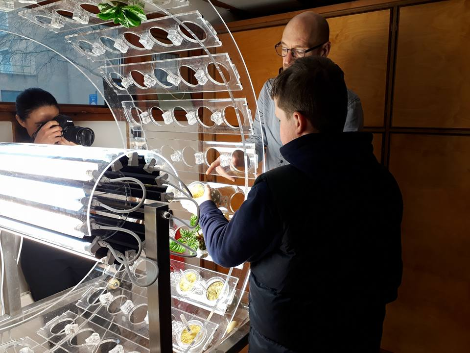child looks at plant orbital: a clear plastic circular machine using hyroponics to grow plants and vegetables
