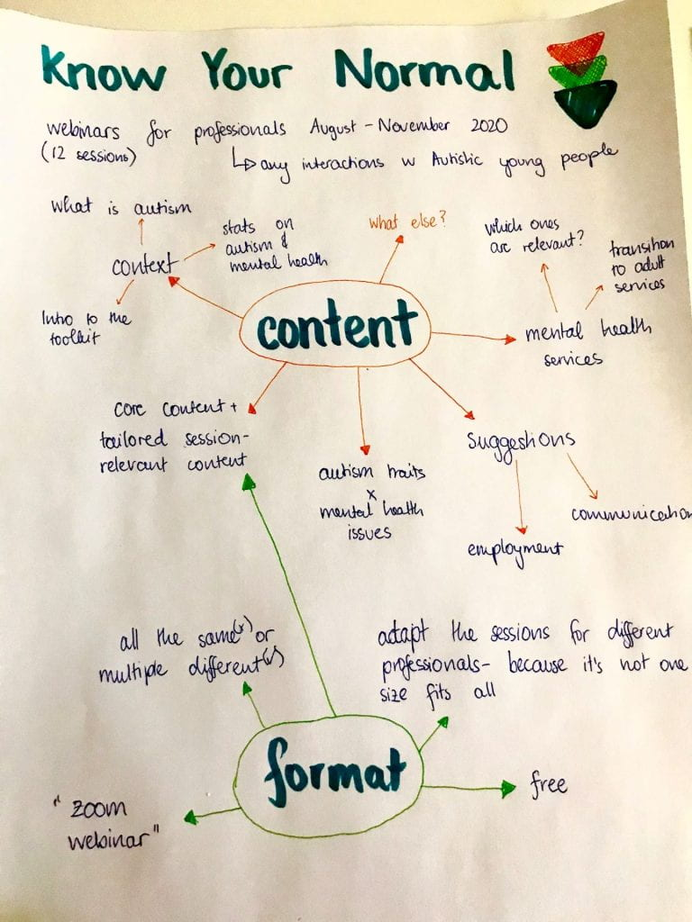 mind maps of the Know Your Normal sessions with the topics 'content', 'format', 'additions' and 'how we can be involved', around the main topics are ideas generated by young people and illustrations with quote bubbles