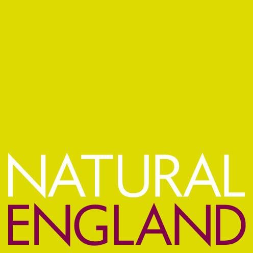 NatEng_logo_RGB