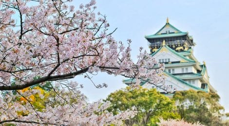 The Joint Japan/World Bank Graduate Scholarship Program (JJWBGSP)