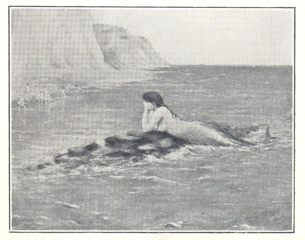 The Mermaid 001