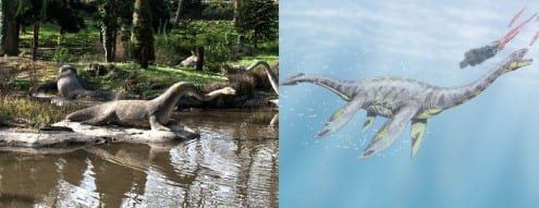 Hawkins' plesiosaur (left) and a modern artist's impression (right). Photo credit: Berlt Watkin (CC-BY) and Dmitry Bogdanov (CC-BY)