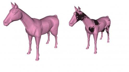 Pony-pic-3