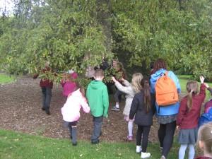 Botanic Gardens Teddy Bear's Picnic 002