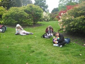 Botanic Gardens Teddy Bear's Picnic 012