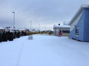 lawfield snow