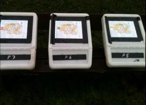orienteering Boxes jpeg