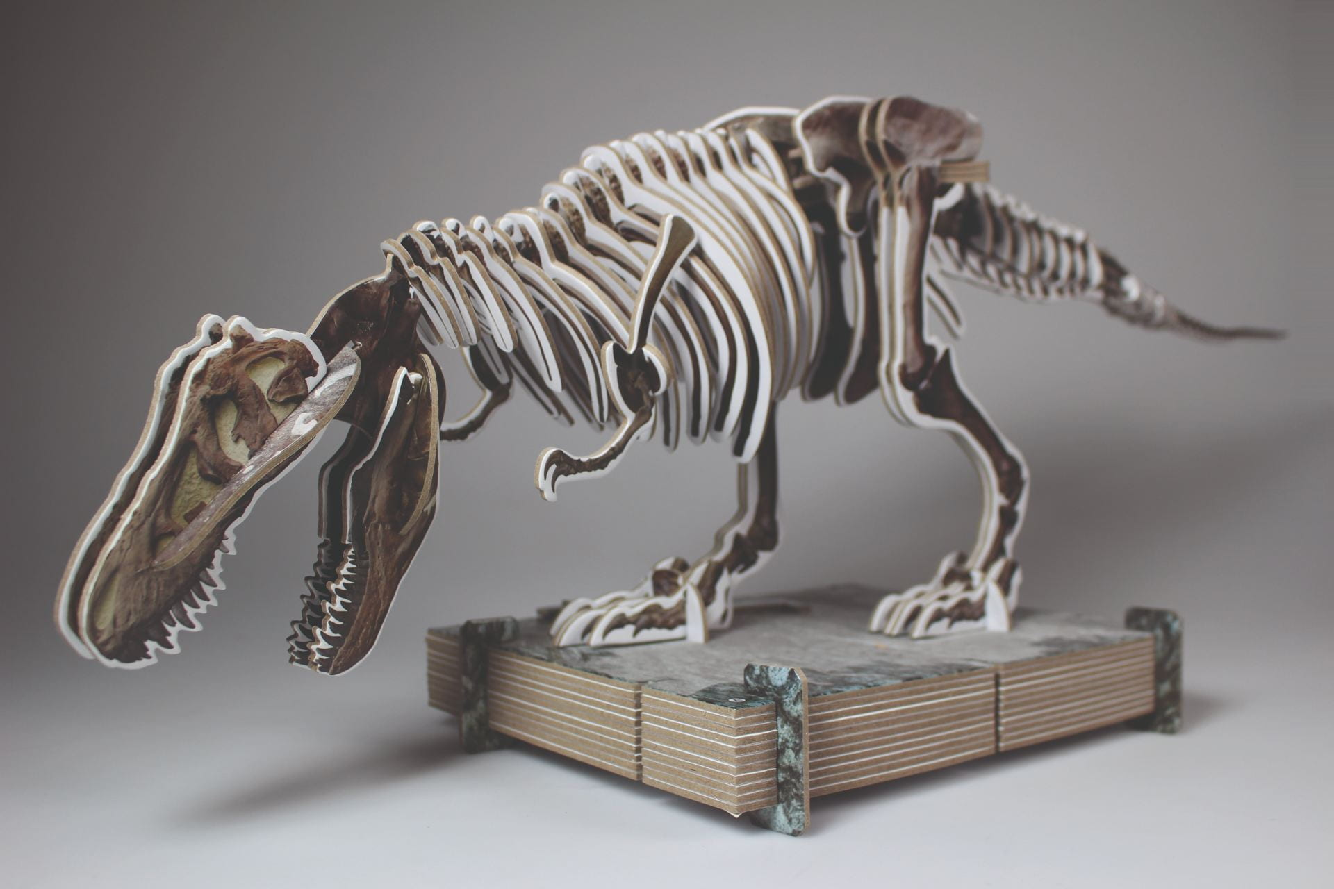 'Dorling Kindersley', 'Make Your Own T.Rex' Picture Book, Model Kit Design by Jemma Westing