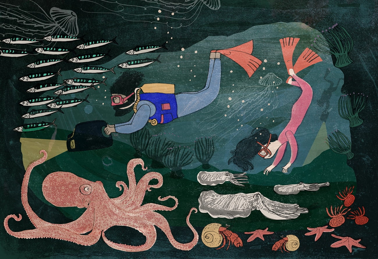 Romy and the Aquanauts, Picture Book, Speculative
