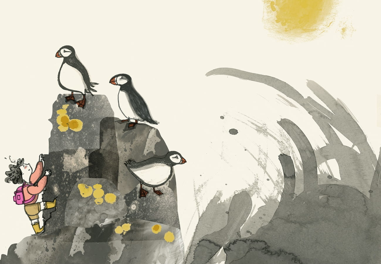 Romy and the Puffins, Picture Book, Speculative