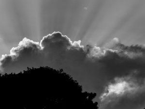 Monochrome cloud