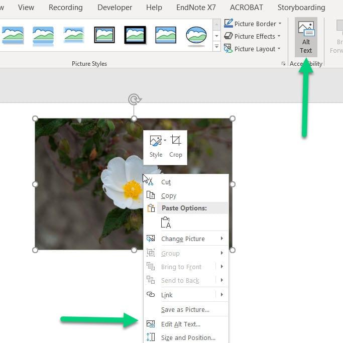 Power point add alt text locations
