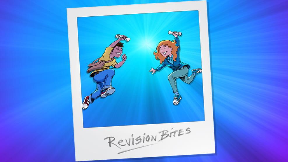 Revision Bites