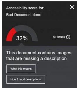 Accessibility Score