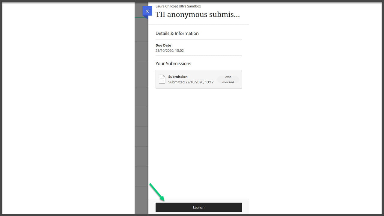 Screenshot of the side panel for Turnitin with an arrow pointing at the Launch button