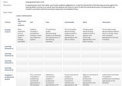 Undergraduate Blackboard rubric template
