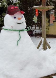 We haven't had enough snow yet this winter to build a snowman. But I made this one a couple of years ago and he raised a smile amongst friends and neighbours.