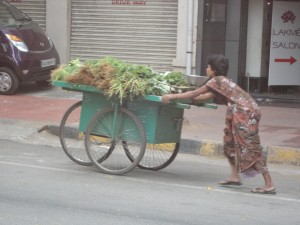 The aroma of fresh herbs notifies that this lady is coming with her wares, hoping to attract a good market.