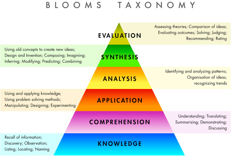 types of business essay assessment