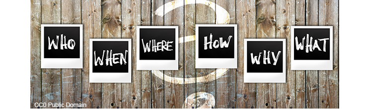 Questions: Who, When, Where, How, Why and What