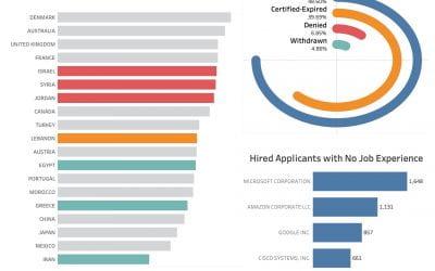 US Permanent Visa Applications Insights