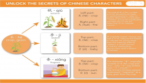 The secret of Chinese characters