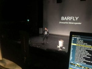 "Liv stands on stage dressed as a fly, behind them a large screen reads ""BARFLY Drosophila Melanogaster"". In the foreground of the shot is a laptop screen, indicating that the shot was taken from the theatre's control booth."